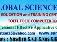 GLOBAL SCIENCE SYSTEM PJK