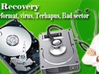 Data Recovery Spesialis